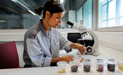 Επιστημονική έρευνα και ανάπτυξη