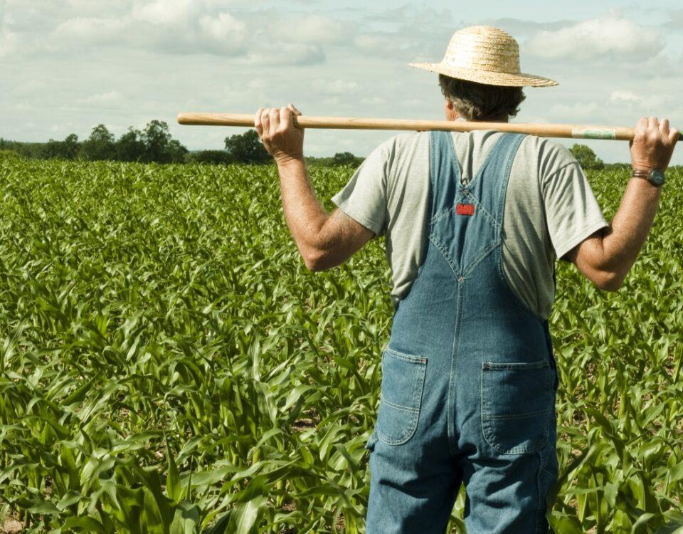 Το-ΦΕΚ-για-επιδοτήσεις-Αγροτικής-Ανάπτυξης