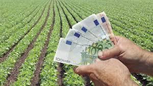 Δεν-θα-υποβάλλουν-δηλώσεις-Φ.Π.Α.-οι-αγρότες-που-προτίθενται-να-επιλέξουν-την-επαναφορά-τους-στο-ειδικό-καθεστώς.