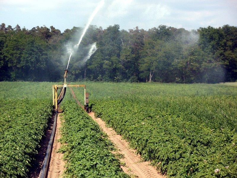 Έρχεται-και-ο-φόρος-νερού-στις-αγροτικές-καλλιέργειες