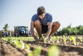 Αγροτική Ανάπτυξη Μέτρο 4.2.1 και Μέτρο 4.2.2 / Δικαιούχοι / Επιλέξιμες Δράσεις & Δαπάνες / Ημερομηνίες υποβολών.